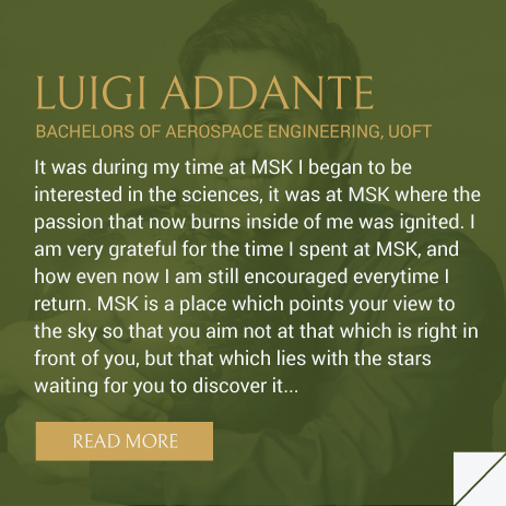 MSK-LUIGI-PREVIEW-DESC